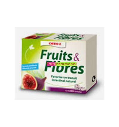 Fruits & Fibres Transit cubes à mâcher ORTIS