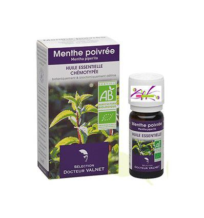 Organic Essential oil peppermint Dr Valnet